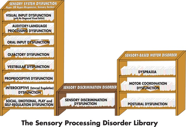 Quick and Easy Guide to the Different Types of Sensory Processing Disorder Part 2 of 2: The SPD Library
